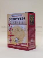 Cordyceps sušeni prah 50g