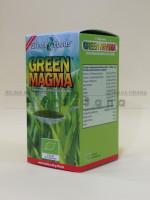 Zelena Magma 80 gr (prah soka mladog lišća ječma)
